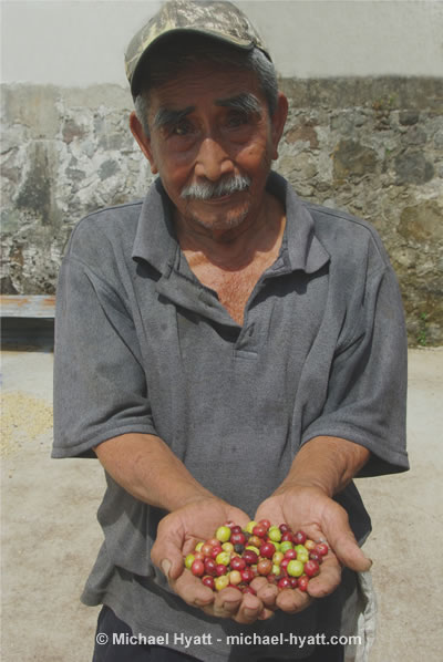 Don Gato - Renowned Coffee Grower (Salvador Urbina, Chiapas 2010)